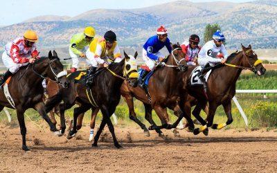 Typer hesteveddeløp Ayr