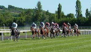 På nettaktivitetstipping og Hesteveddeløp